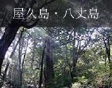 屋久島・八丈島フォトギャラリー