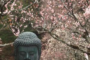 0319北鎌倉4
