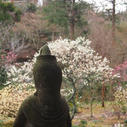 0319北鎌倉9