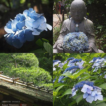 20130621095309620-北鎌倉,明月院,あじさい寺